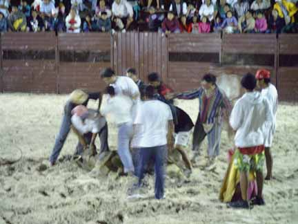 Image of bullfight_crowd.jpg