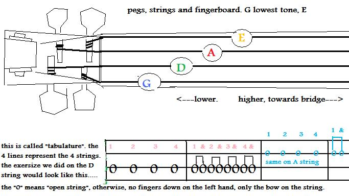 Image of fingerboard.jpg